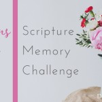 Colossians-3-Memory