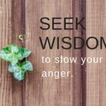 Seek wisdom to slow your anger